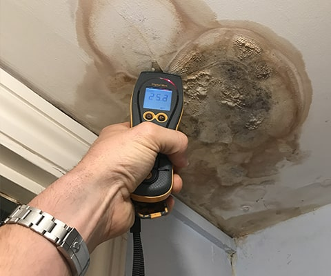 when to call damp experts in london